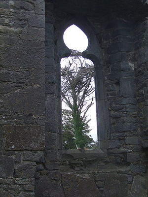 Ardfert Cathedral - Window in Ardfert friary