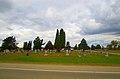 Arena Cemetery - panoramio.jpg