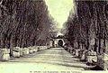 Arles Alyscamps 1910.jpg