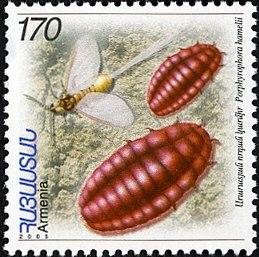 Armenian Stamp Karmin