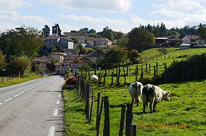 Artas, Isère - The road into Artas
