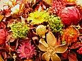 Artificial flower-Iran 11.jpg