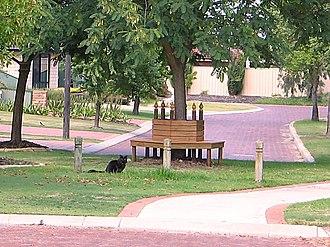 Atwell, Western Australia - Street in Atwell