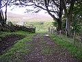 Auchencrosh Trail - geograph.org.uk - 697877.jpg