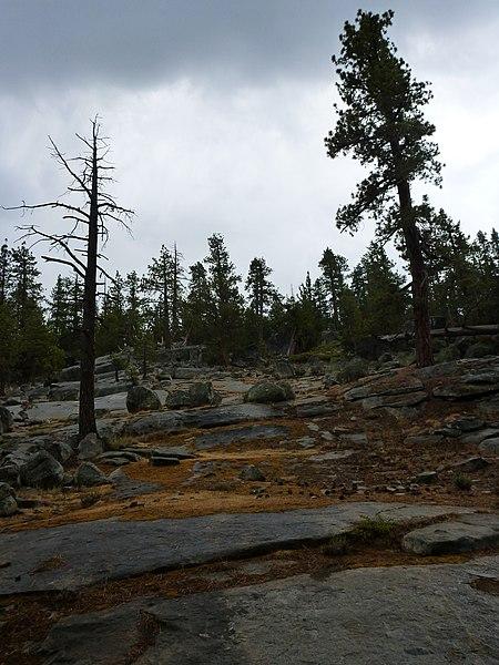 File:August 2012 - panoramio (67).jpg