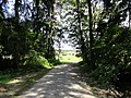Autenried - panoramio (4).jpg