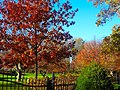 Autumn Colors at the Executive Mansion - panoramio (1).jpg