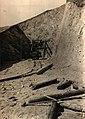 BASA-157K-1-821-7-Septemvri-Dobrinishte narrow gauge line, 1927.jpg