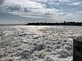 Baie Somme - Le Crotoy (FR80) - 2021-05-29 - 22.jpg