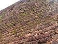 Bakel Fort Pallikara kasargod pictures 19.jpg