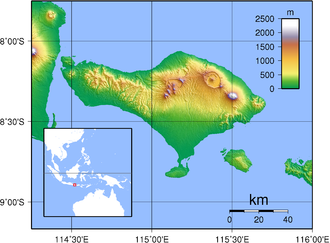 Negara: The Theatre State in Nineteenth-Century Bali - Topographic map of Bali