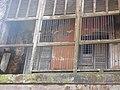 Baliati Palace 09.jpg