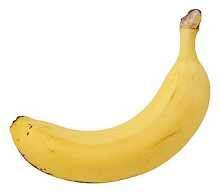 Banana equivalent dose informal measurement of ionizing radiation exposure; approximately 0.1 microsievert