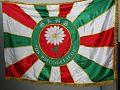 Bandeira Psicodélicos.jpg