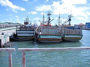 Barcos de Pesca.JPG