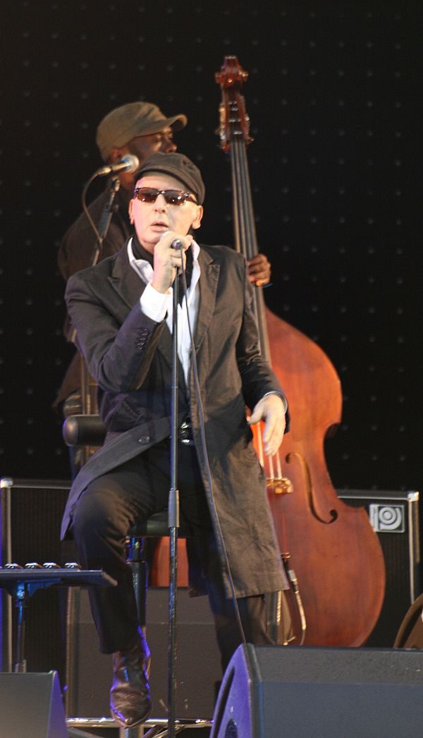 Photo Alain Bashung via Wikidata