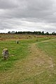 Battle of Culloden battlefield 2009-5.jpg