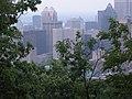 Behind the Bushes Montreal - panoramio.jpg
