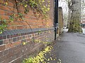 Bench Mark, Sidgwick Avenue - geograph.org.uk - 1254454.jpg