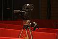 Berlinale 2013 . 64. Berliner Filmfestspiele.jpg