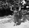 Betegarjevi s Tater s perilom na plohu 1955.jpg