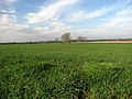 Big Norfolk Sky - geograph.org.uk - 669282.jpg
