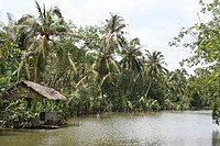 Binh Quoi Traditional River Hut Jun2005.jpg
