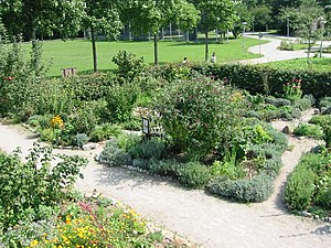 "English: Organic garden of the ""Ökostatio..."