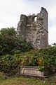 Birr Old St. Brendan's Church Tower 2010 09 07.jpg