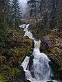 Black Forest (near Elztal) 9 (39373234625).jpg