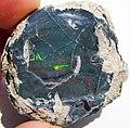 Black precious opal (Tertiary; Wollo Province, Ethiopia) 6 (48163606917).jpg