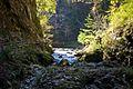 Bled - Vintgar Gorge - Radovna River (6318599049).jpg