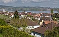 Blick auf Berlingen, den Untersee und Gaienhofen.jpg