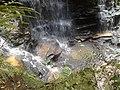 Blue Mountains National Park NSW 2787, Australia - panoramio - noah.odonoghue (13).jpg