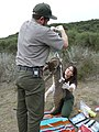 Bobcat Research (12211479186).jpg