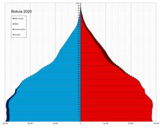 Demographics of Bolivia