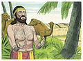 Book of Genesis Chapter 24-5 (Bible Illustrations by Sweet Media).jpg