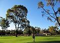 Botanic garden, Perth.JPG