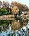 Botanik park-Bursa-Sonbahar 2009 - panoramio (1).jpg