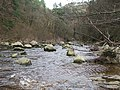 Boulders in River Allen - geograph.org.uk - 1317306.jpg