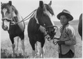 Boy holding reins for a team of two horses - NARA - 285502.tif