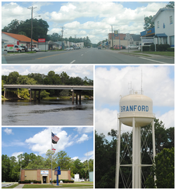 Top, left to right: Downtown Branford, Suwannee River, Branford Town Hall, Branford water tower