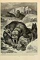 Brehm's Life of animals (Page 283) (6220165281).jpg