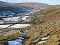Bridleway across Ackerley Moor - geograph.org.uk - 1077277.jpg