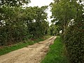 Bridleway by the A356 - geograph.org.uk - 1505403.jpg