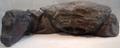 BronzeCrabForBaseOfCleopatrasNeedle MetropolitanMuseumOfArt.png
