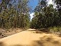 Brooman NSW 2538, Australia - panoramio (111).jpg