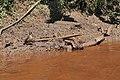 Brumadinho, Minas Gerais (47021728802).jpg
