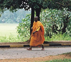 Buddhist Monk in Sri Lanka.