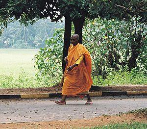 Buddhist Monk in Sri Lanka.